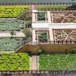 Giardino all'Amber Fort nei pressi di Jaipur, in Rajasthan, India