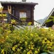 Abitazione all'Alpe Devero, Piemonte
