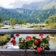 Torrente all'Alpe Devero, Piemonte