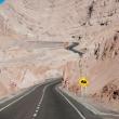 Strada cilena presso Calama, Cile