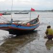 Raccolta di conchiglie, Chaung tha beach