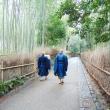 Bosco di bambù, Giappone