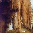 Interno della Grotta del Fico nel Golfa di Orosei, Sardegna