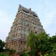 Tempio di Chidambaram, India