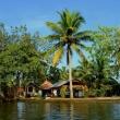 Villaggio, Kerala backwaters