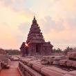 Alba sullo Shore temple, Mamallapuram