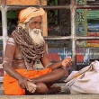 Sadhu all'Arunachaleswar,  Tiruvannamalai