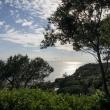 Dai Giardini La Mortella