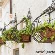 Fioriere nel centro storico di Locorotondo, Puglia