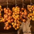 Pomodorini-appesi-Masseria-Le-Stanzie-Supersano