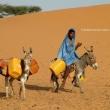 Locale al rifornimento di acqua, Mauritania