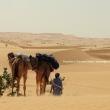 In partenza per il deserto, Mauritania