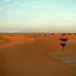 Villaggio di pastori nomadi, Mauritania