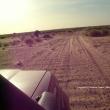Parc national Du Banc d'Arguin, Mauritania