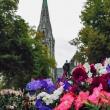 Cattedrale di Christchurch, Nuova Zelanda