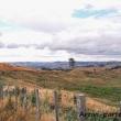 Colline presso Waitomo, Nuova Zelanda