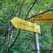 Indicazioni presso gli Orridi di Uriezzo, Piemonte