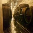 Botti di legno nelle cantine della fabbrica della birra di Pilsen, Repubblica Ceca