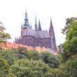 Cattedrale di S.Vito vista dai giardini Presidenziali, Praga