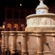 Fontana della Pigna alla sera, Rimini