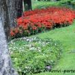 Giardini di Riva del Garda, Trentino - Alto Adige