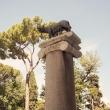 Statua della Lupa presso Il Campidoglio, Roma