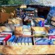 Mercatino dei libri, Rostov