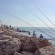 Pescatori presso il Porto, San Benedetto del Tronto