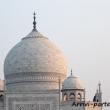 Cupola del Taj Mahal - Agra, India