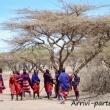Tribù Masai, Tanzania