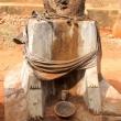 Rappresentazione vodoo, Togo