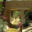 Corso d'acqua nell'oasi, Nefta