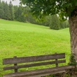 Panchina nei pressi del lago di Sompunt, Val Badia