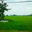 Nei pressi di Rach, Vietnam