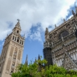 Esterno della Cattedrale di Siviglia in Andalusia, Spagna