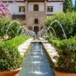 Giardini dell'Alhambra di Granada in Andalusia, Spagna