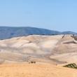 Panorama bucolico nei pressi di Setenil de las Bodegas in Andalusia, Spagna
