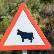 Segnale stradale nei pressi di Ronda in Andalusia, Spagna