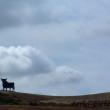 Silhouette di un toro a Carmona in Andalusia, Spagna