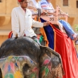 Elefante all'Amber Fort nei pressi di Jaipur, in Rajasthan, India