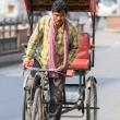 Risciò nei pressi di Jaipur, in Rajasthan, India
