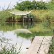 Pesca presso il Fiume Lamone, Ravenna