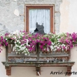Scorci di Arabba, Veneto