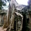 Ta Phrom, Cambogia