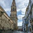 Esterno della Grande Moschea di Cordova in Andalusia, Spagna