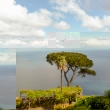Fiori presso Villa Rufolo a Ravello, Costiera Amalfitana