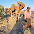 Dromedari e popolazione locale presso la salita sul vulcano, Etiopia