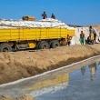 Raccolta e trasporto del sale presso il Lago Afrera, Etiopia