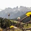 Monte Cristallo, Alto Adige