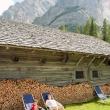 Presso la Malga Grünwald, Alto Adige